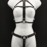 Queen Leather Harness Set